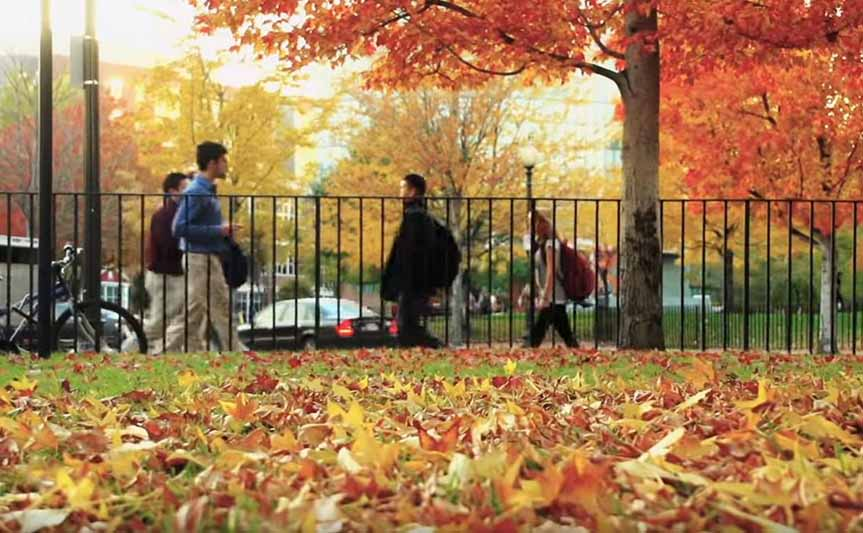 video of various scenes of the Boston campus in the Fall.