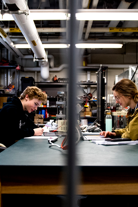 Engineering students work on projects in the lab.