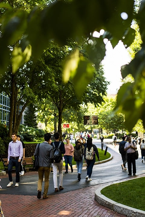 students on campus in front of trees