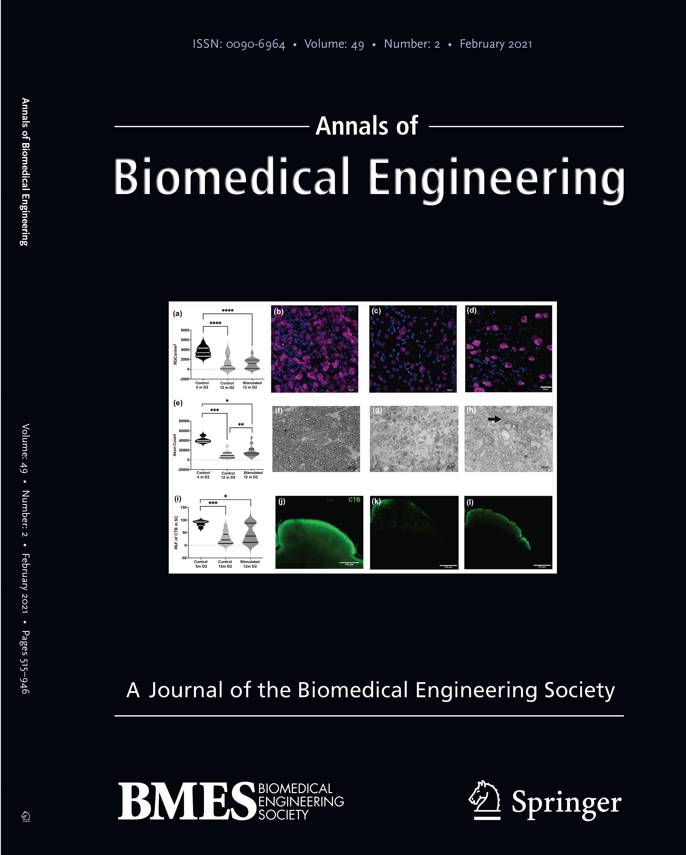 cover of research journal in BME