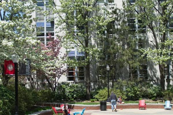 trees on campus