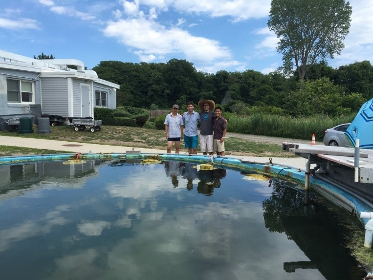 students experimenting at a pond