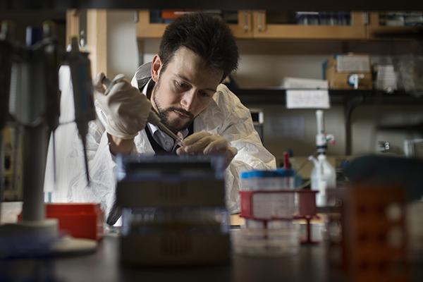 professor working in lab