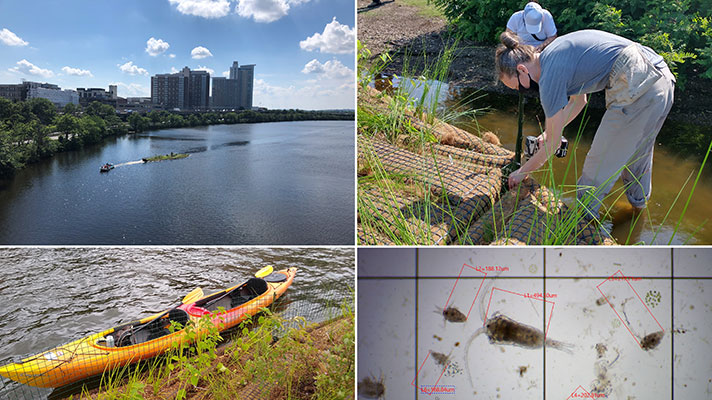 charles river research collage of photos