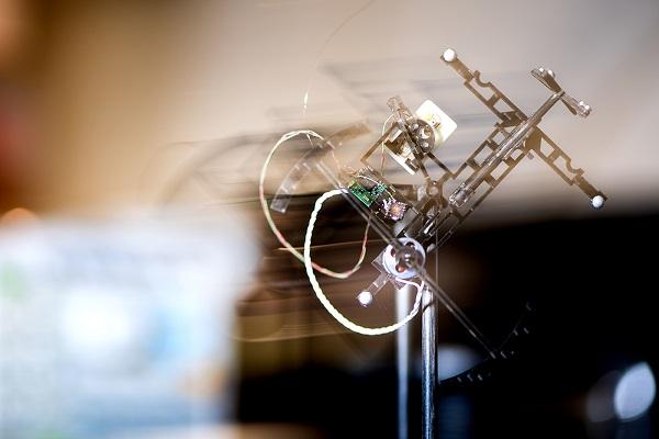 robotic bat drone