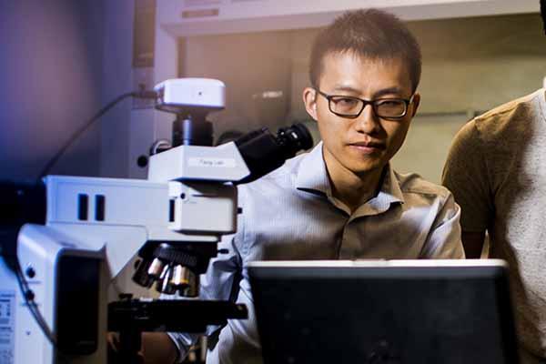 professor working on laptop in lab